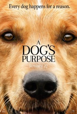 A Dog's Purpose HD Trailer