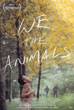 We The Animals HD Trailer
