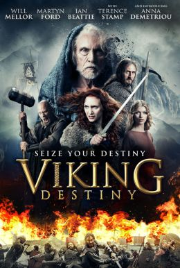 Viking Destiny Poster