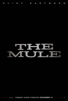 The Mule HD Trailer