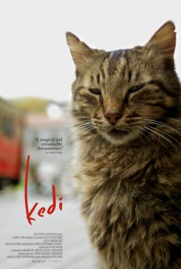 Kedi HD Trailer
