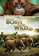 Born To Be Wild HD Trailer
