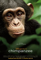 Chimpanzee HD Trailer