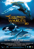 Dolphins & Whales Tribes of the Ocean 3D Poster