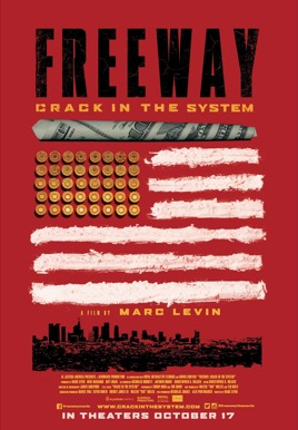 Freeway: Crack In The System Poster